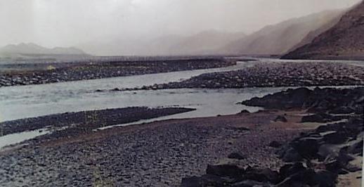 阿拉干营地:新疆著名自驾游营地,拥有塔河绿色走廊,新疆最长红砖路